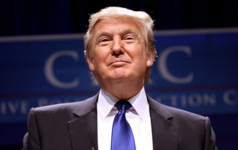 Trump Elected President, America Headed in a New Direction