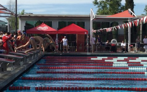Swim Team Ready to Dive into Trinity League
