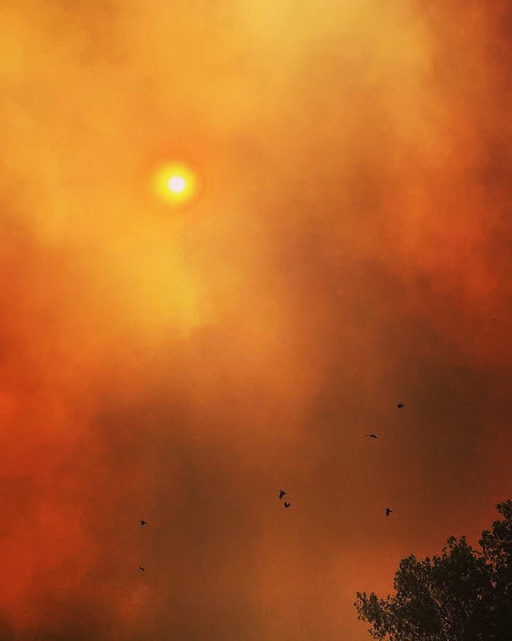 On September 9th, 2017, at about 11:30 students began rushing out of their Block 6 classrooms to find a orange sky greeting them as the walk to their next class. Students began receiving Amber alerts and text messages informing them of the Canyon 2 Fire.