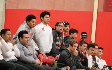 Teamwork assists wrestling in finishing season strong
