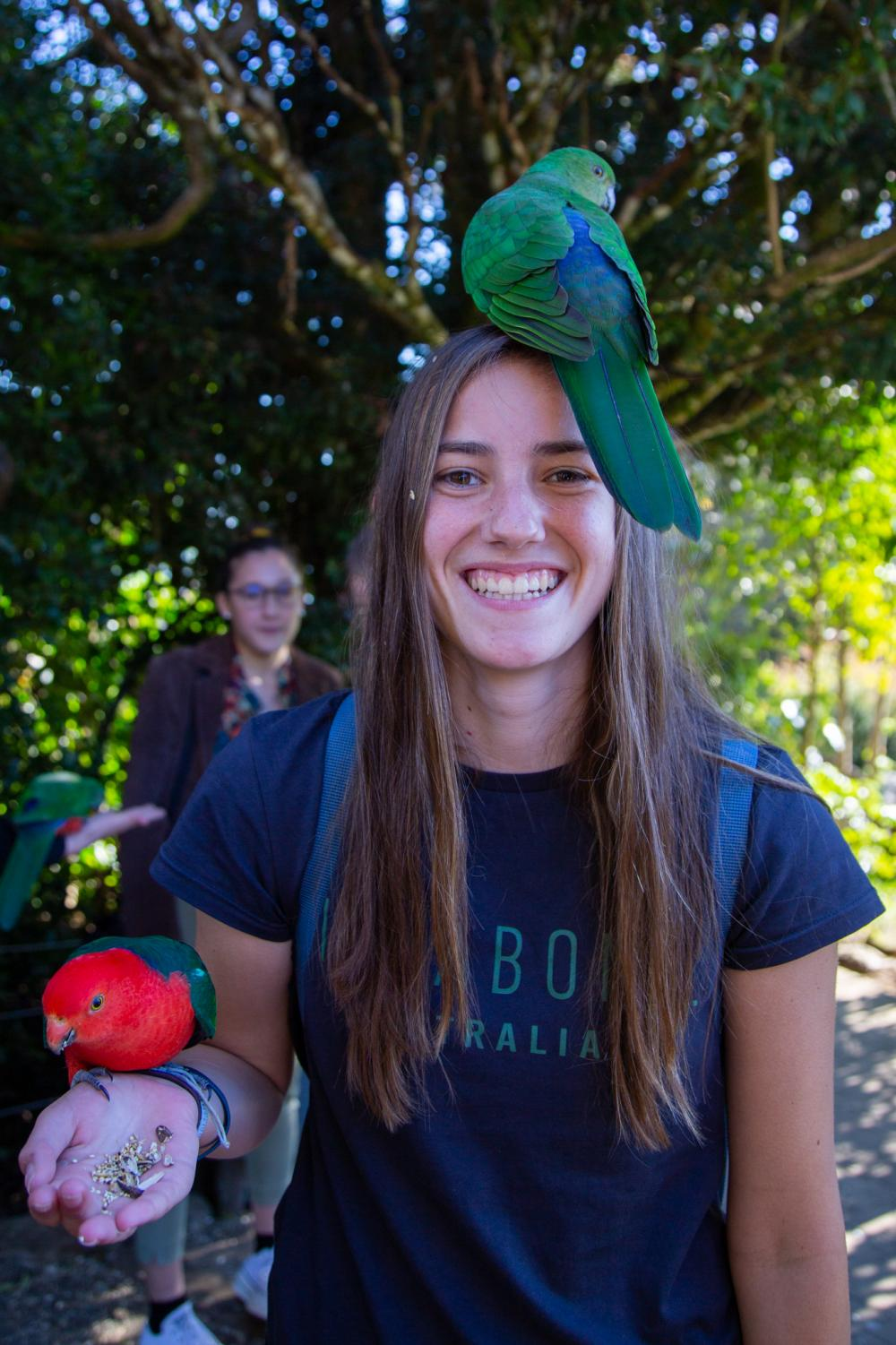 FEEDING+TIME%3A+Junior+Hannah+Wheeler+smiles+while+feeding+parrots+on+the+Gold+Coast%2C+Australia+on+July+18.+%E2%80%9CYou+learn+about+Darwin%E2%80%99s+theory+of+evolution+with+beaks+and+birds%2C+we+got+to+see+that+firsthand+with+the+parrots%2C%E2%80%9D+said+Hinz.