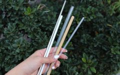 Plastic straw ban may hurt individuals with disabilities