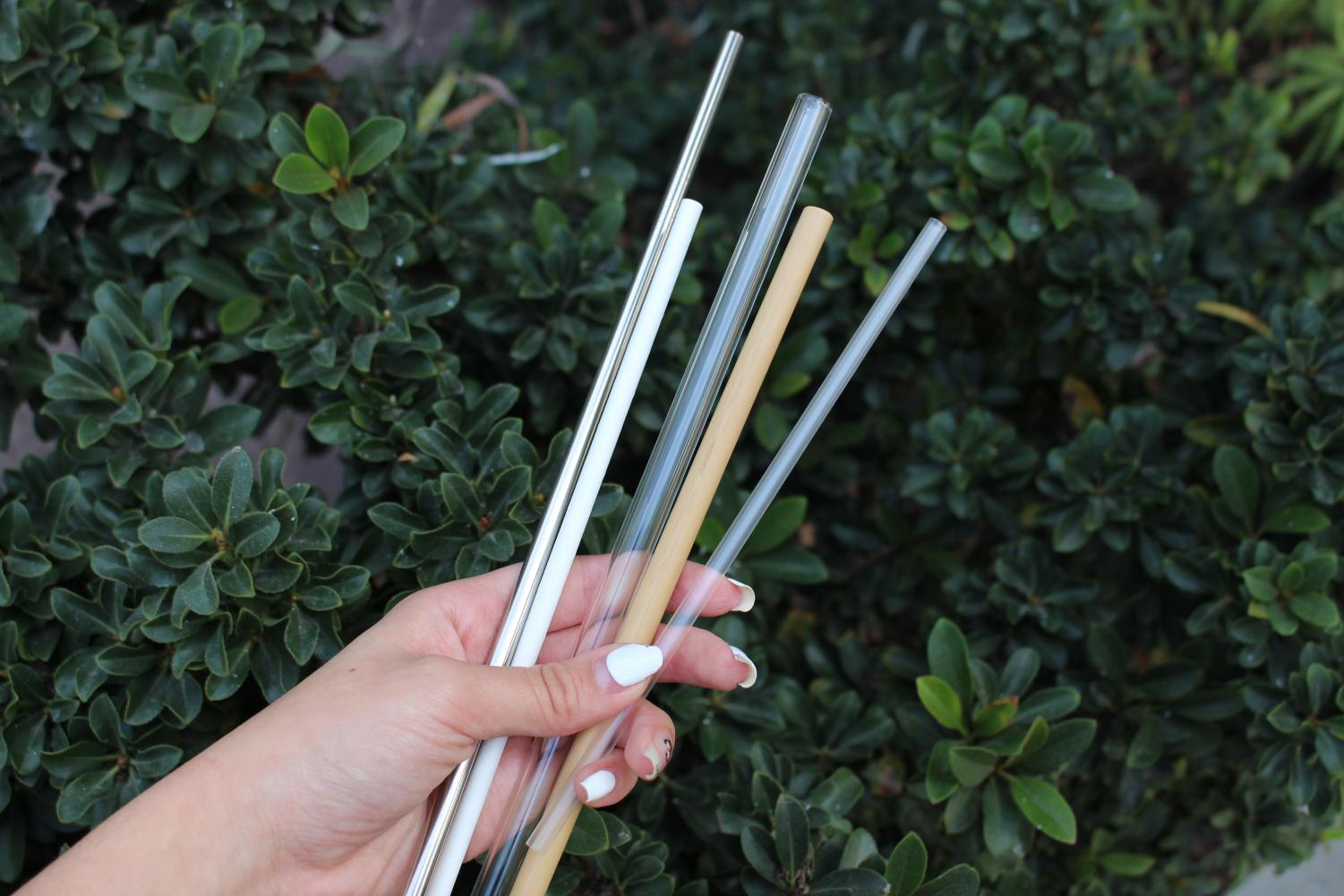 Metal, paper, glass and bamboo straws (pictured in order from left to right) are plastic straw alternatives that have grown in popularity recently due to concerns about the disposal of plastic straws. According to The New York Times, 170 to 390 million plastic straws are being used and dumped by Americans into the world's oceans every single day.