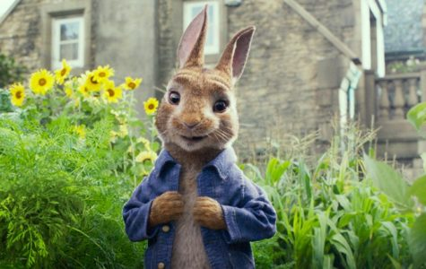 Peter Rabbit is no perfection but it's no danger either