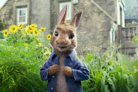 Peter Rabbit is no perfection but it