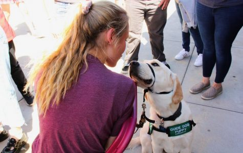 """GIRLS BEST FRIEND: During the club fair Kalczynska and Corky share a moment while taking a break. """"My sister and I honestly didn't think so many people would want to get involved, were really excited to work with all the new members"""" Olivia Kalczynska said."""