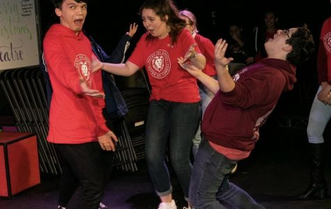 Chuckles 4 Charity raises money for charity, new thespian scholarship