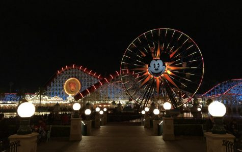 Disneyland strategies allow for stress-free fun