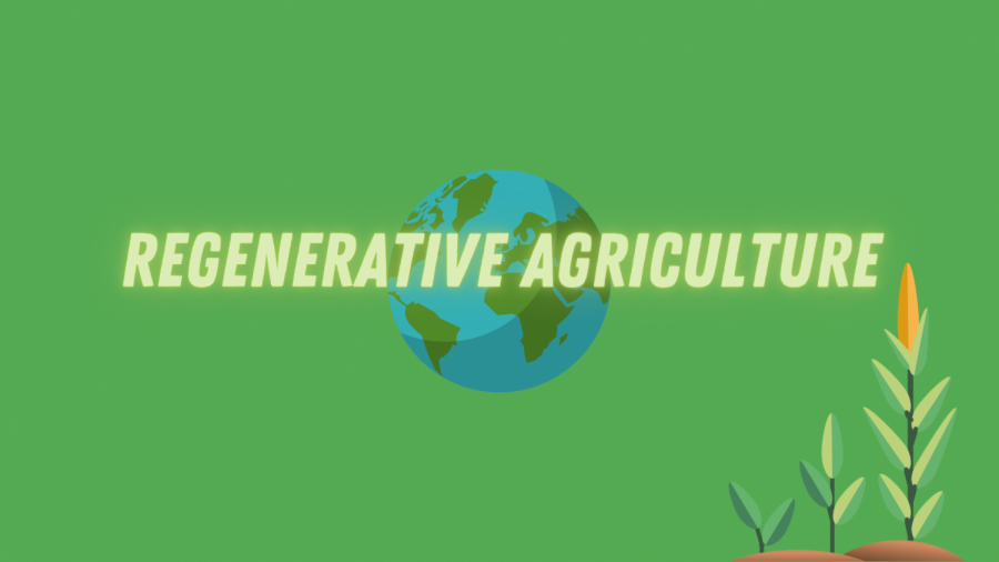 Regenerative-Agriculture-Story-Info-Graphic-